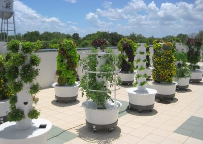 rooftopgardenprojectflorida